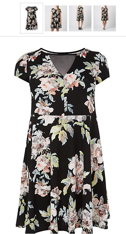 Floral Print Mesh Skater Dress